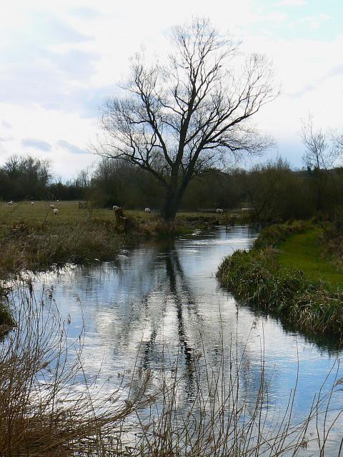 la riviere Kennet pres de Axford